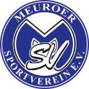 logo-msv-400px